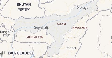 Asam - szczegółowa mapa