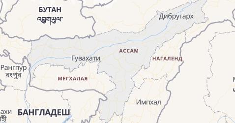 Ассам - карта