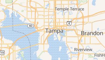 Tampa - szczegółowa mapa Google