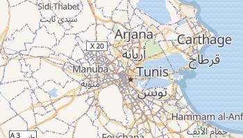 Tunis - szczegółowa mapa Google
