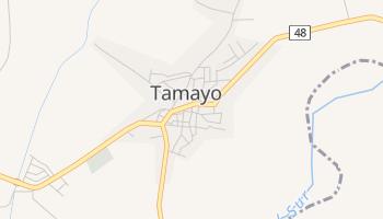 Online-Karte von Tamayo