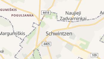 Online-Karte von Švenčionys