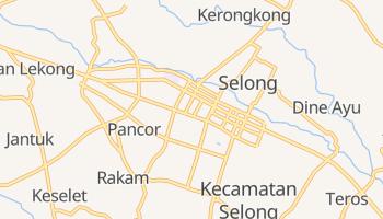 Selong online map