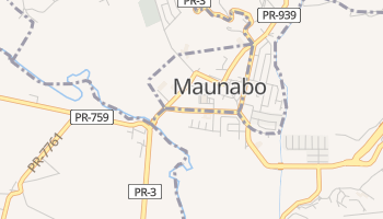 Maunabo online map