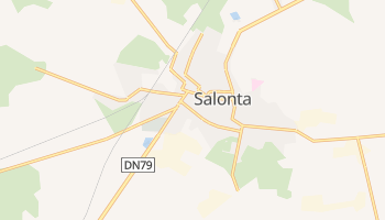 Salonta online map