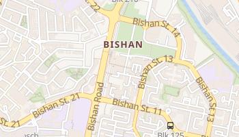 Bishan online map