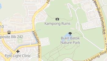 Bukit Batok online map