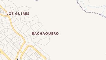 Bachaquero online map