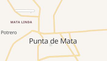Punta De Mata online map