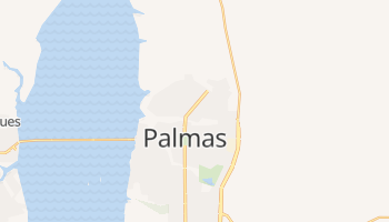 Carte en ligne de Palmas