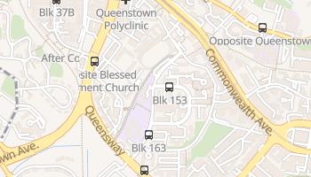 Carte en ligne de Queenstown