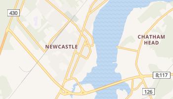 ニューカッスル の地図