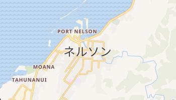 ネルソン の地図