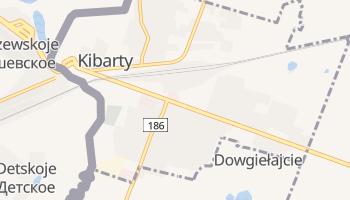 Kiborty - szczegółowa mapa Google
