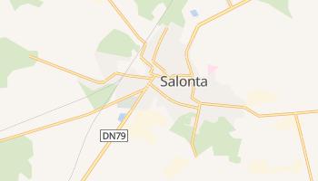 Salonta - szczegółowa mapa Google
