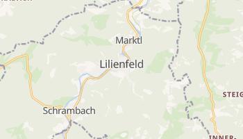 Лилиенфельд - детальная карта