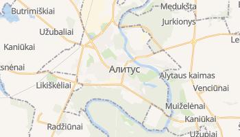 Алитус - детальная карта