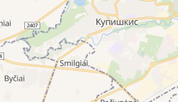Купишкис - детальная карта