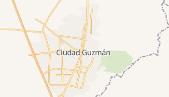 Сьюдад-Гусман - детальная карта