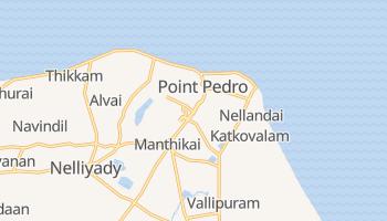 Пойнт-Педро - детальная карта