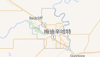 梅迪辛哈特 - 在线地图