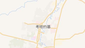 考哈约基 - 在线地图