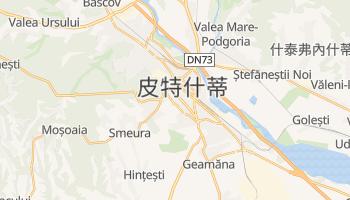 皮特什蒂 - 在线地图