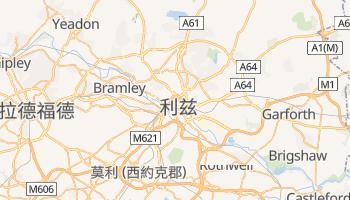 利兹 - 在线地图
