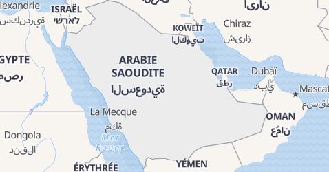 Carte de Arabia Saoudita