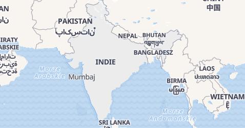 Indie - szczegółowa mapa