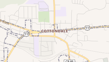 Cottondale, Alabama map