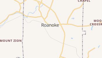 Roanoke, Alabama map