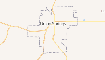 Union Springs, Alabama map