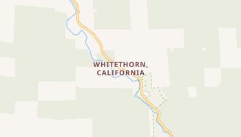 Whitethorn, California map