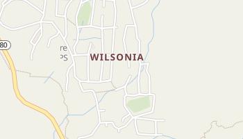 Wilsonia, California map
