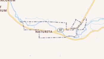 Naturita, Colorado map
