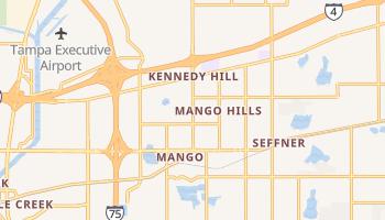 Mango, Florida map