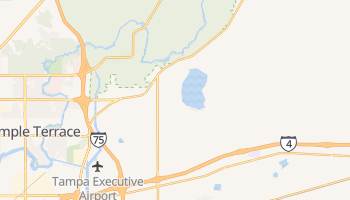 Thonotosassa, Florida map