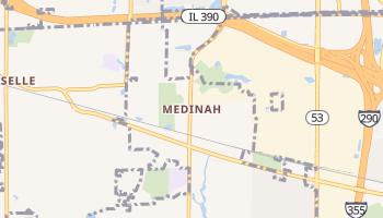 Medinah, Illinois map