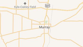 Murray, Kentucky map