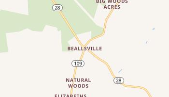 Beallsville, Maryland map