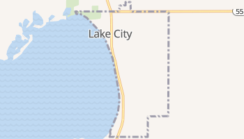 Lake City, Michigan map