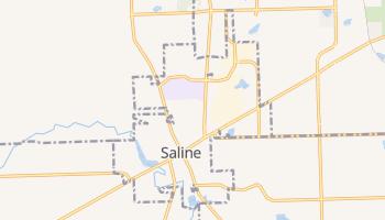 Saline, Michigan map