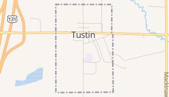 Tustin, Michigan map