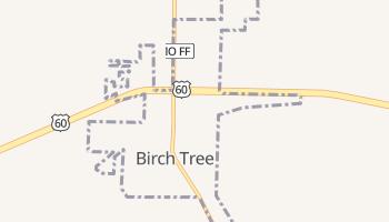 Birch Tree, Missouri map