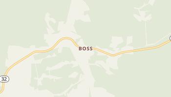 Boss, Missouri map