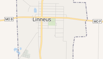 Linneus, Missouri map