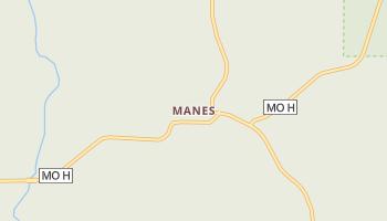 Manes, Missouri map
