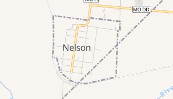 Nelson, Missouri map