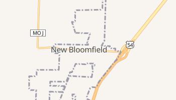 New Bloomfield, Missouri map